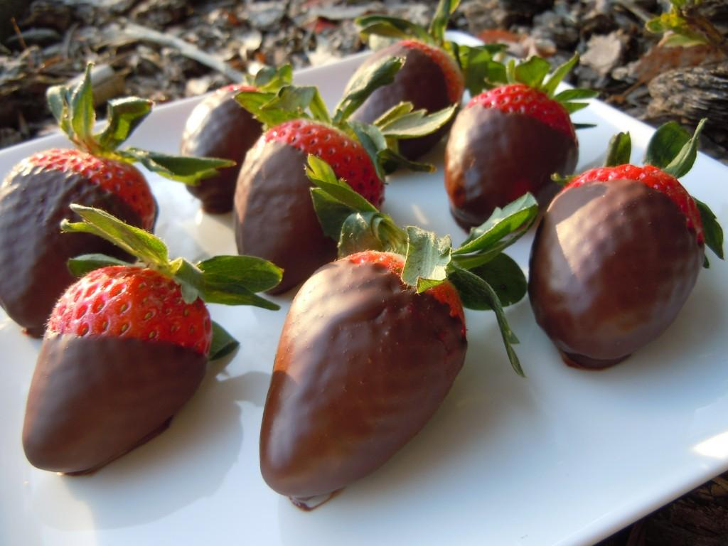 Chocolate Dipped Strawberries » Nutmeg Notebook