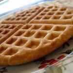 Corn Waffles  Nachos 009