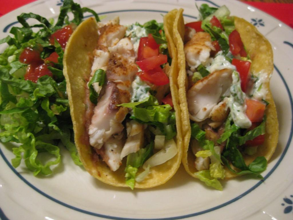 Fish Tacos with Lime – Cilantro Crema » Nutmeg Notebook