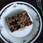 Go Berry Breakfast Bars 094 (640x480) (640x480)
