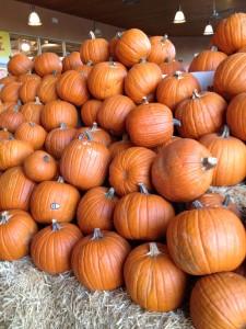 Pumpkins at Whole Foods  Notebook Nutmeg
