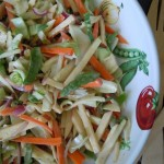 Bok Choy Fennel Salad Numteg Notebook