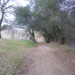 Olmstead Trail 003
