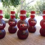 Pom-021