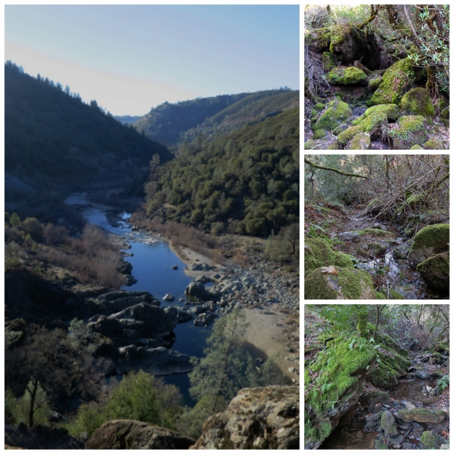 Nutmeg Notebook Western States Trail American River Canyon
