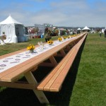 Worlds Longest Picnic Table 041